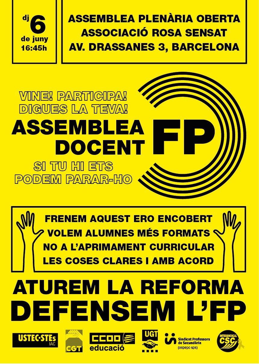 assemblea_fp_6j.jpg